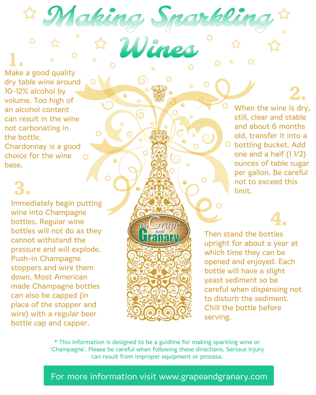 Sparkling Wine Infographic