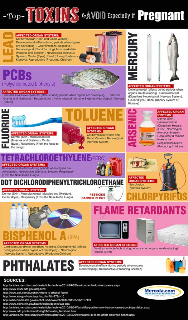 toxins-to-avoid-if-pregnant
