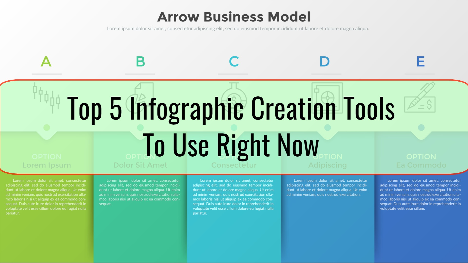 Top 5 Infographic Creation Tools To Use Right Now